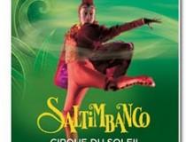 Saltimbanco, songe d'un soir d'hiver