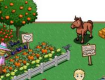 Farmville, le bonheur dans le pré ?